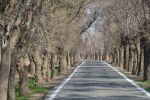 جاجیگا - رزرو اقامتگاه بومگردی تهران