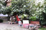 جاجیگا - اجاره خانه روستایی در تالش