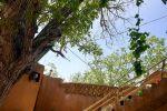 جاجیگا - رزرو اقامتگاه بومگردی