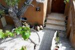 جاجیگا - اجاره خانه در شاهرود