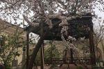 جاجیگا - اجاره اقامتگاه بومگردی در یزد