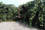 جاجیگا - اجاره خانه روستایی در رامسر