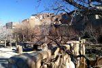 جاجیگا - اقامتگاه بومگردی در سمنان