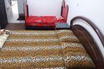 جاجیگا - رزرو آپارتمان مبله در همدان