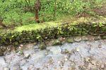 جاجیگا - اجاره ویلا در شمال