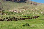 جاجیگا - رزرو کلبه در آذربایجان شرقی