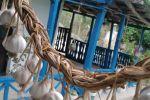 جاجیگا - کلبه در رودبار
