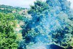 جاجیگا - ویلا اجاره ای در شمال