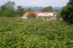 جاجیگا - ویلا شمال