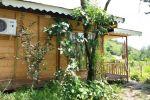 جاجیگا - اجاره کلبه در شمال