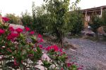 جاجیگا - اقامتگاه بومگردی در نیشابور