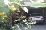 جاجیگا - اجاره ویلا در سوادکوه