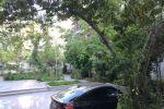 جاجیگا - آپارتمان مبله تهران اجاره